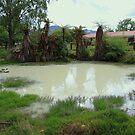 Sulphur Pool Rotorua New Zealand by R-Summers