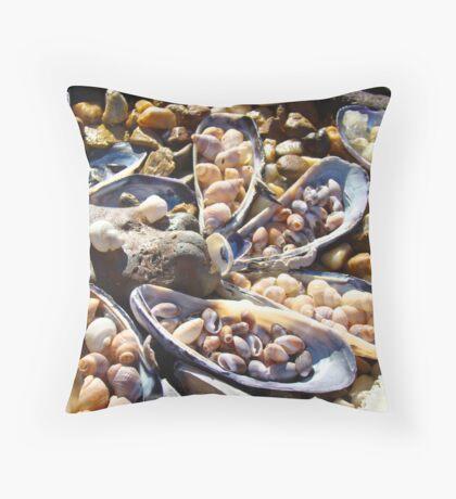 Sea Shells Art Prints Coastal Beach Seashell Throw Pillow