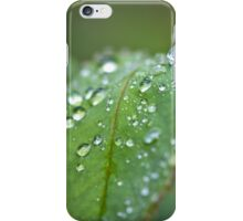 After Rain I Phone Case iPhone Case/Skin