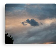 Sunset Over Suburbs Canvas Print
