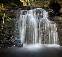 Strickland Falls, South Hobart, Tasmania #4 by Chris Cobern