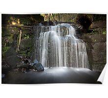 Strickland Falls, South Hobart, Tasmania #4 Poster