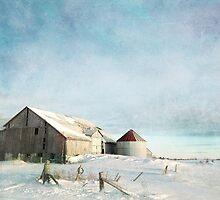 evening at the barn by Janice Squires