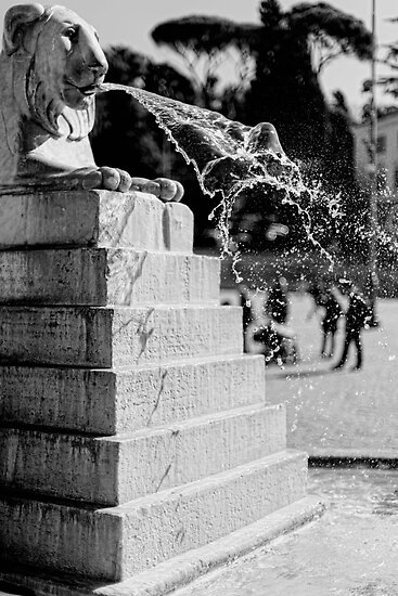 Fountain, Piazza del Popolo, Rome by Andrew Jones