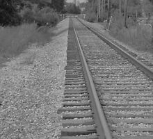 Life's Worn Out Tracks by Guy Ricketts