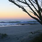 Daybreak at South Kingscliff ... by gail woodbury