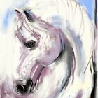 horse white angel by Go van Kampen