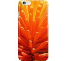 Hot Poker Up Close iPhone Case/Skin