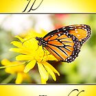Happy Birthday Monarch Butterfly Card by daphsam