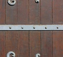 Antique Door with metal Hinges by kirilart