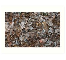 Frosted Mulberry Leaves Art Print