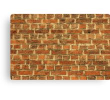 Cracked Dirty Brick Wall Background Canvas Print