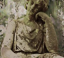 serenity by David Kessler