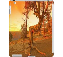 Grand Canyon Sunny iPad Case/Skin