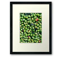 A Harvest of Green Olives Framed Print