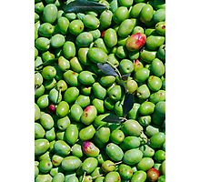 A Harvest of Green Olives Photographic Print