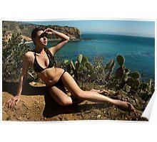 Sexy bikini on bird view location of CA coastline Poster