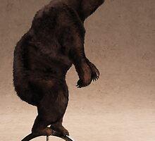 Equilibrium IV by Cynthia Decker