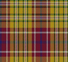 01417 Contrecoeur District Tartan Fabric Print Iphone Case by Detnecs2013