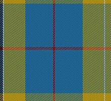 01423 Cornish National Day District Tartan Fabric Print Iphone Case by Detnecs2013