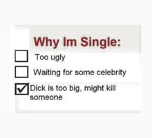 Why I'm Single T-Shirt