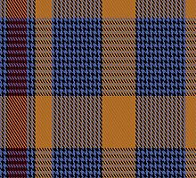 01430 Coulin Fashion Tartan Fabric Print Iphone Case by Detnecs2013