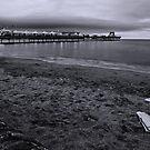 Paignton Pier b/w by Lissywitch