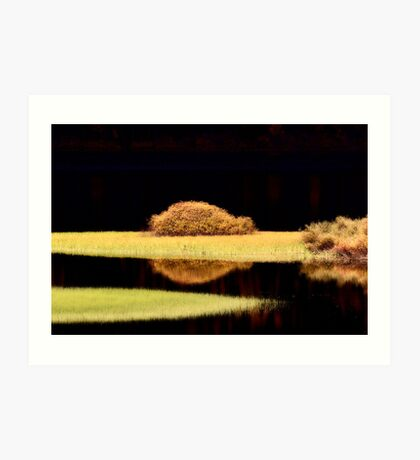 Water reflections in autumn Art Print