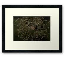 Spider art Framed Print