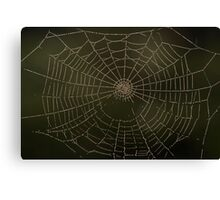 Spider art Canvas Print