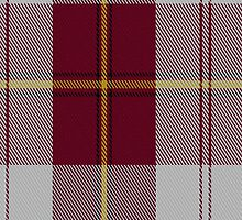 01446 Cunningham Dress Burgundy (Dance) Tartan Fabric Print Iphone Case by Detnecs2013