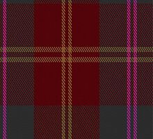 01450 Cypress Fashion Tartan Fabric Print Iphone Case by Detnecs2013