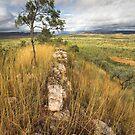 The Ridge by David Haworth