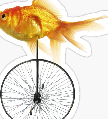 unicycle goldfish Sticker