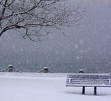 Winter Wonderland* by jvm87