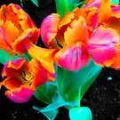 Vibrant Neon Tulips in Bloom by Flatoutwhimsy