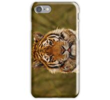 Tiger 01 iPhone Case/Skin