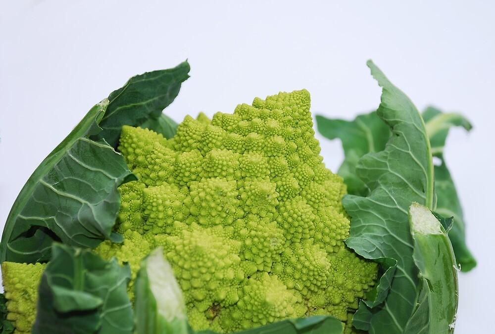 Romanesco Cauliflower by jojobob