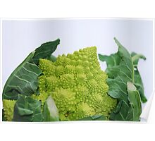 Romanesco Cauliflower Poster