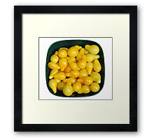 Yellow Tomatoes in Sunlight Framed Print