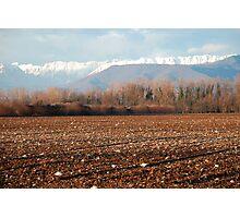 Friuli Winter Field Photographic Print
