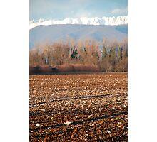Winter Field, Friuli Photographic Print
