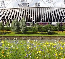 Olympic stadium, London 2012 by Karentreefern