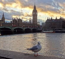 Big Ben and Palace of Westminster  by Karentreefern