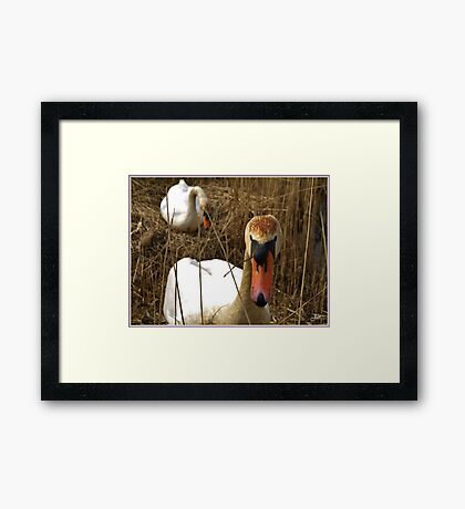 Happy Easter... Framed Print