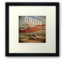 OB1019  Framed Print