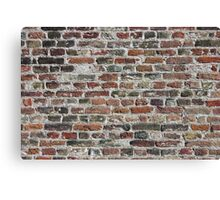 Colorful Bricks Background Canvas Print