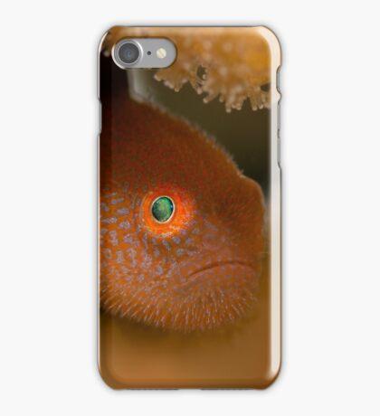 Red beard iPhone Case/Skin