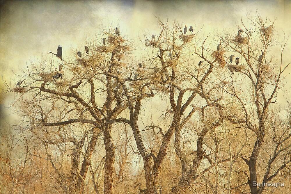 Great Blue Heron Hangout Fine Art by Bo Insogna