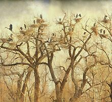 Great Blue Heron Hangout Fine Art by Bo Insogna